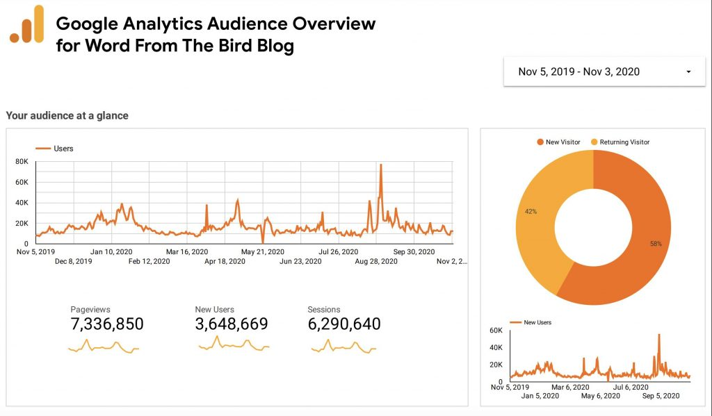 google analytics audience overview for word from the bird
